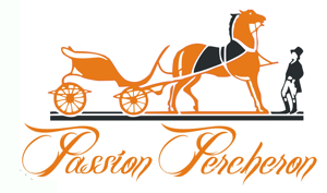 Passion Percheron