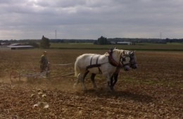 Emmanuel au travail des champs